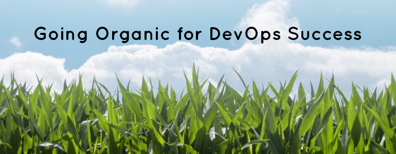Organic engineering team a must for long term DevOps success