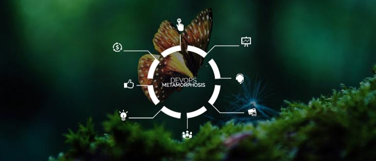 A DevOps Metamorphosis Echoes Through Reverb.com Part 2