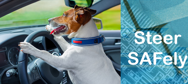 Steer SAFely – So how do you do it?