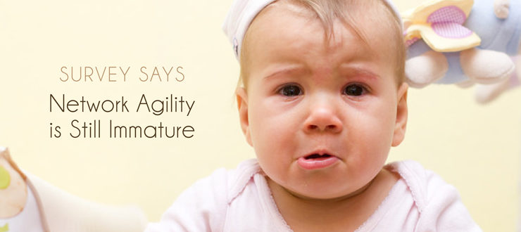 Survey says network agility is still immature