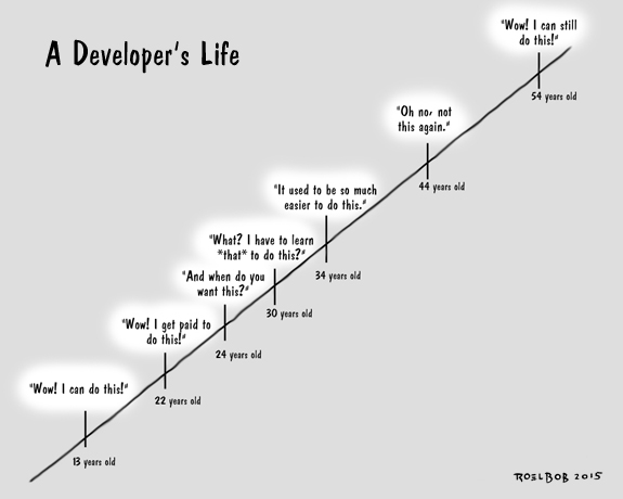 The Lifetime of a Developer