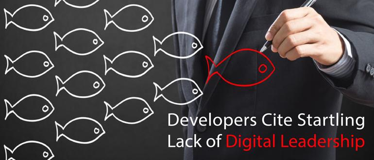 Developers Cite Startling Lack of Digital Leadership