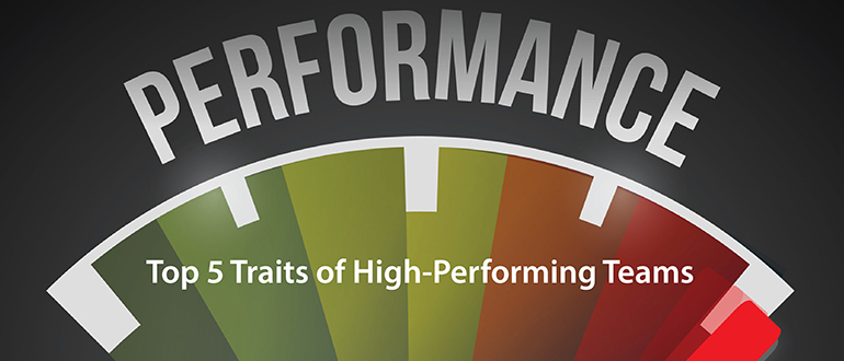 personality characteristics which hinder a team performance Enhance team performance specifics: to recognize and mitigate the personality characteristics that can derail success hogan team report brochure.