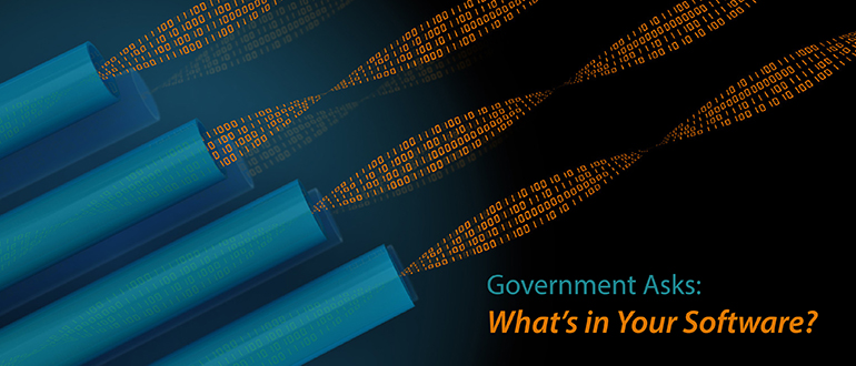 Government Asks: What's in Your Software?