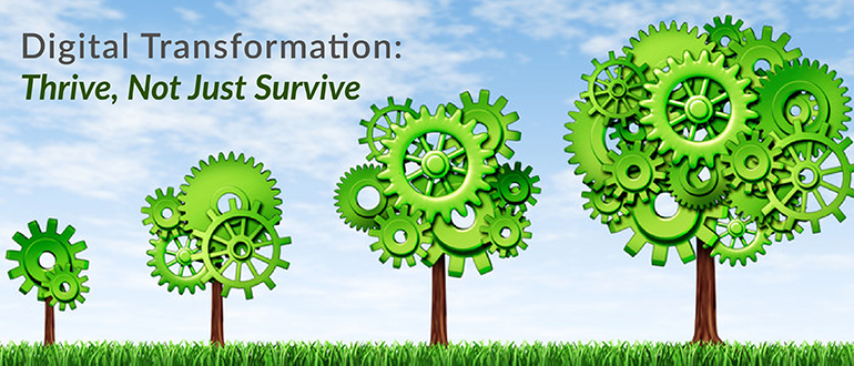 Digital Transformation: Thrive, Not Just Survive
