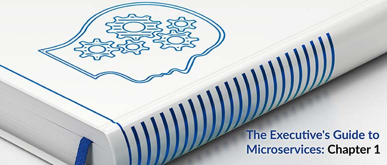The Executive's Guide to Microservices: Chapter 1