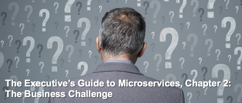 The Executive's Guide to Microservices Chapter 2: The Business Challenge