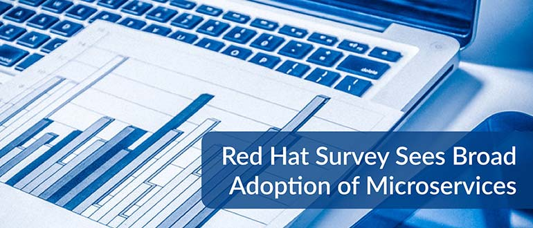 Red Hat Survey Microservices