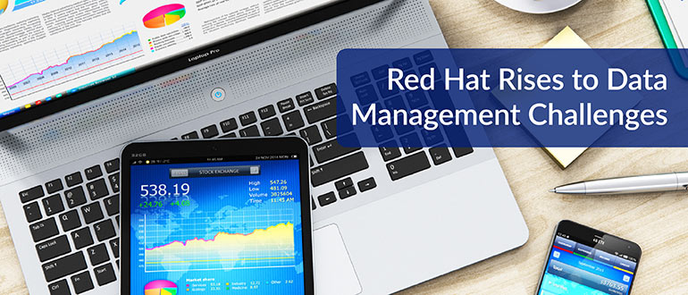 Red Hat Data Management Challenges