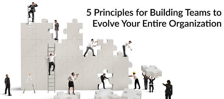 Building Teams Evolve Organization