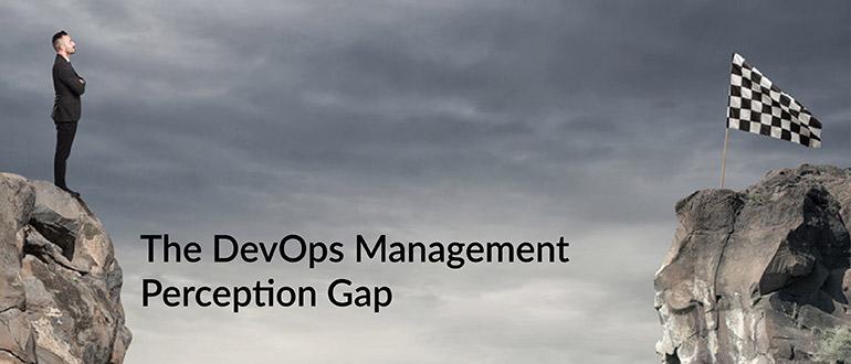 DevOps Management Perception Gap