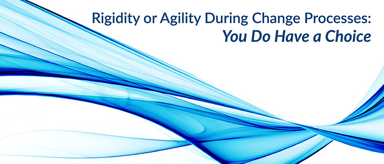 Rigidity or Agility During Change Processes