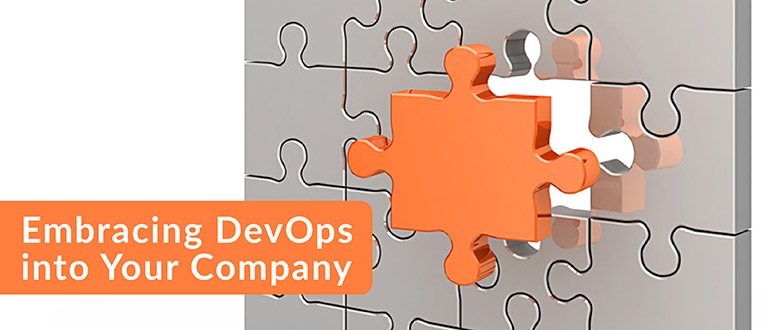 Embracing DevOps into Your Company