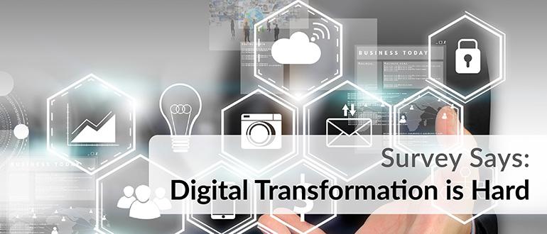 Digital Transformation is Hard Survey