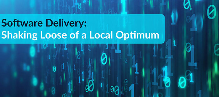 Software Delivery Shaking Local Optimum
