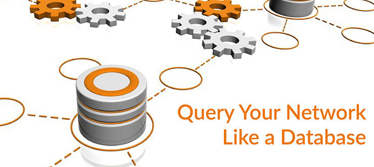 Query Your Network Like a Database