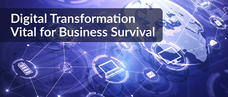 Digital Transformation Vital for Business Survival
