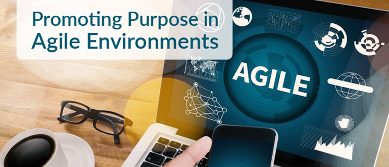 Promoting Purpose in Agile Environments