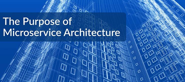 The Purpose of Microservice Architecture
