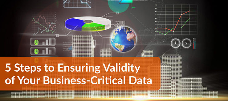 Steps to Ensuring Validity of Your Business-Critical Data
