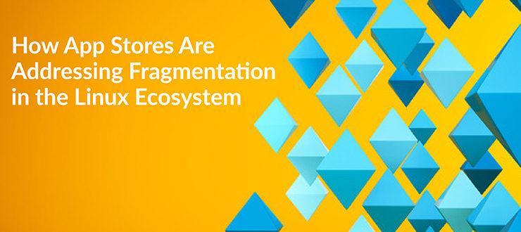 Addressing Fragmentation in the Linux Ecosystem