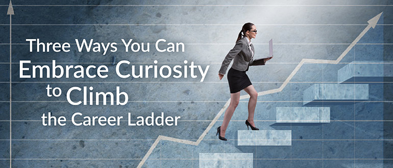 Embrace Curiosity Climb Career Ladder